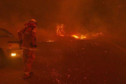 Incendios en California. David McNew/Getty Images/AFP