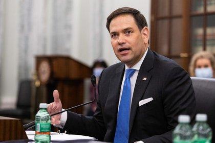 En la imagen, Marco Rubio, senador de Florida. EFE/EPA/Graeme Jennings/POOL/Archivo