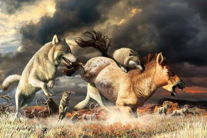 Los lobos grises derriban a un caballo en el hábitat de estepa mamut de Beringia durante el Pleistoceno tardío (hace unos 25.000 años) (Sebastian Carrasco/Europa Press)